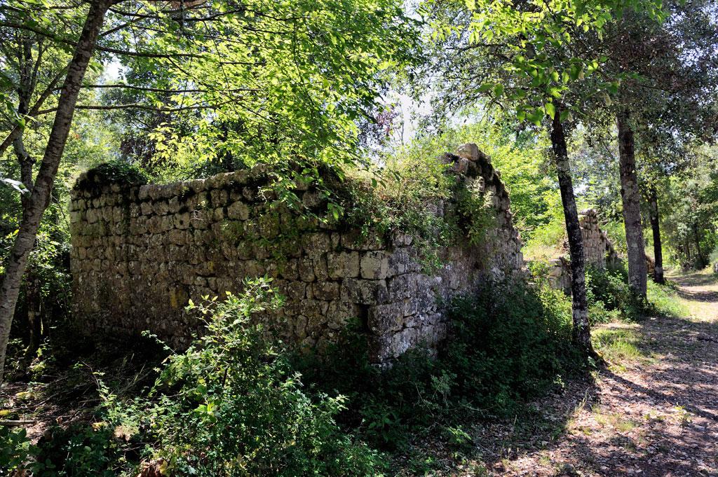Escursione nella riserva naturale di Castelvecchio